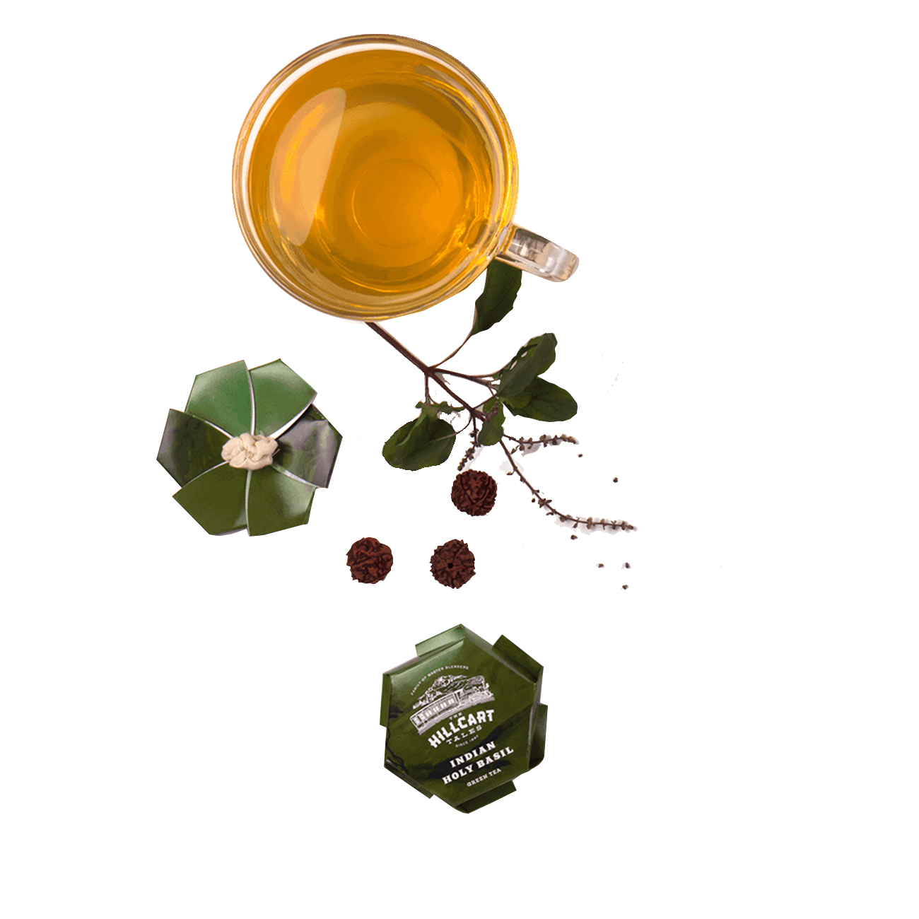catalog/green-tea/indian-holy-basil-t.png